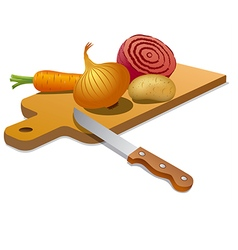 cooking vegetables vector image vector image
