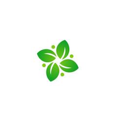 green leaf circle botany logo vector image vector image