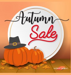 autumn sale sbanner background design vector image