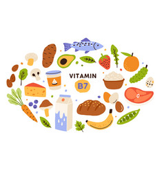 Collection vitamin b7 source food containing vector