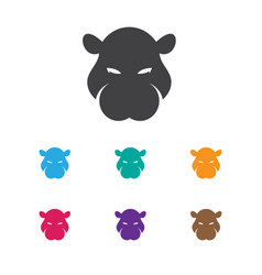 Of zoo symbol on hippo icon vector