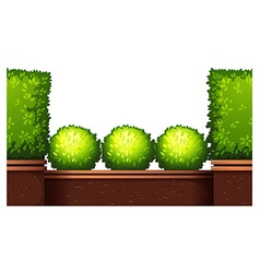 Seamless fence design with bushes vector image