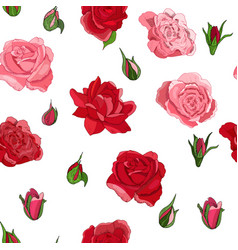 seamless rose pattern isolated on white vector image