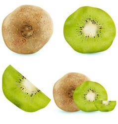 set of realistic kiwi fruits vector image