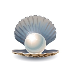 Shiny pearl in opened seashell vector image