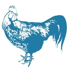 Blue Rooster symbol 2017 by Chinese calendar vector image vector image