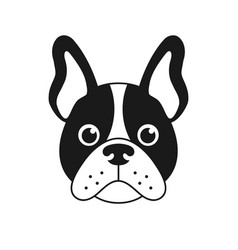 French bulldog face isolated on white background vector
