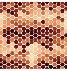 Brown Hexagonal Pattern vector image