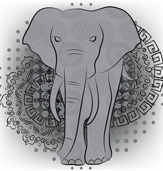 Elephant with patterns and mandalas vector