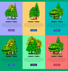 Set green forest summer trees collection in nature vector