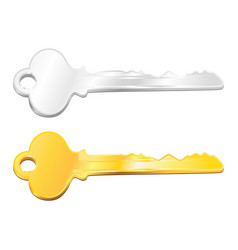 silver and golden key vector image