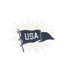 usa flag graphic old vintage vector image