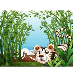 A tiger in a bamboo forest vector