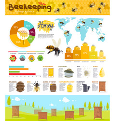 Beekeeping and honey production infographic vector