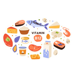 Collection vitamin b12 food cottage cheese vector