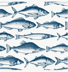 fish seamless pattern hand drawn fishes engraved vector image