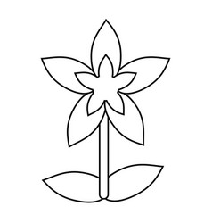 Flower tropical exotic thin line vector