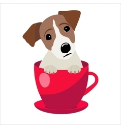 Jack Russell Terrier in red teacup vector