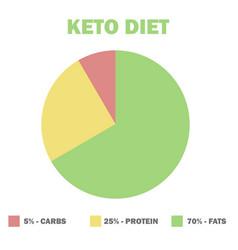 ketogenic diet macros diagram low carbs high vector image