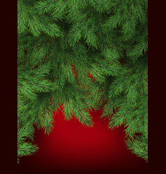 red background with christmas tree branches vector image