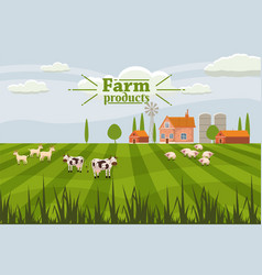 Rural cute landscape with farm and herd cows vector