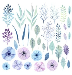 watercolor flowers vector image vector image
