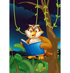 An owl reading vector