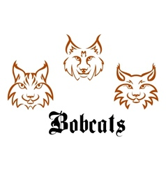 Bobcats and lynxs vector