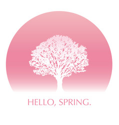 cherry blossom tree in full bloom with text space vector image