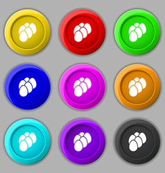 eggs icon sign symbol on nine round colourful vector image