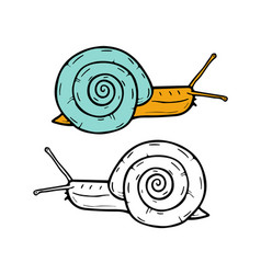 Hand drawn snails vector