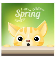 Hello spring season background with a cat vector