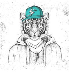Hipster animal tiger dressed in cap like rapper vector