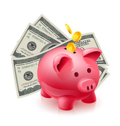 moneybox - pig and dollars on white vector image