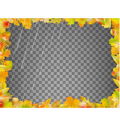 autumn leaves template eps 10 vector image