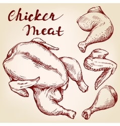 Chicken meat set hand drawn llustration vector