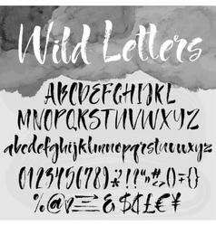 Brush lettering alphabetical set vector