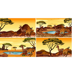 Four different scenes with wild animals vector