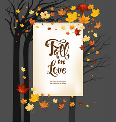 Frame fall leaves on dark background vector