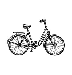ink sketch vintage bicycle vector image