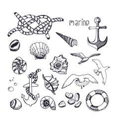Marine topic hand drawn elements isolated on vector