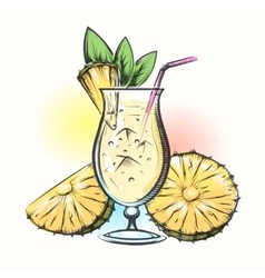 Pina colada tropical cocktail vector