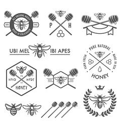 set vintage honey labels and design elements vector image