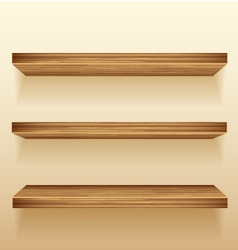 shelf vector image