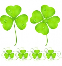 St Patrick's Day clover vector