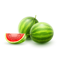Watermelons whole fresh ripe vector
