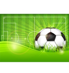 playing field ball green background ball grass vector image