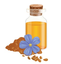 Flax oil seeds and flower vector image