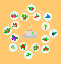 berry set for tea vector image