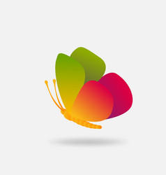 colorful bright flying butterfly in gradient vector image